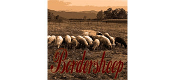 Bordersheep