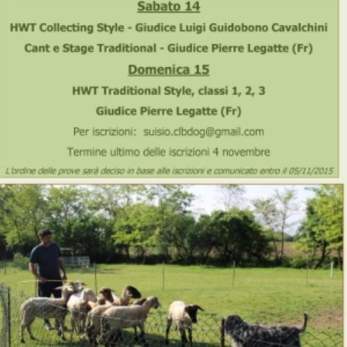 14-15 Novembre 2015 – Suisio – HWT Collecting